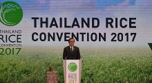 vietnam attends thailand rice convention