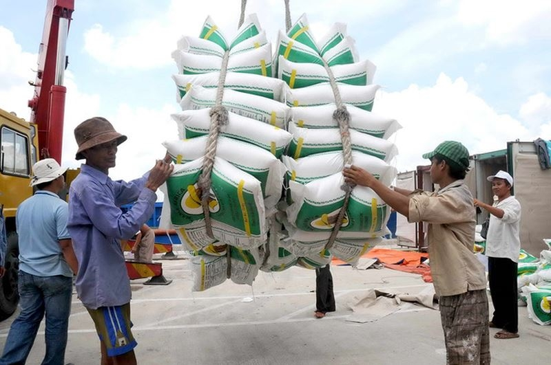 rice exports bring home 11 billion usd in jan apr
