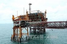 petrovietnam to continue with large scale divestment