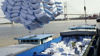 vietnam wins contract to supply 130000 tonnes of rice to the philippines