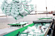maintaining high quality rice structure in exports