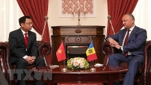 ambassador wishes for growing vietnam moldova ties