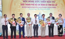 investors pledge more than vnd21 trillion to gia lai