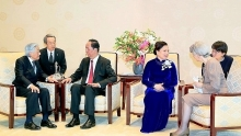 vietnam treasures ties with japan president