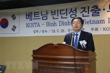 binh dinh province calls for rok investment