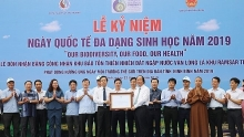 vietnam responds to international day for biological diversity 2019