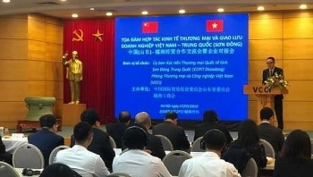 chinas shandong firms seek cooperation opportunities in vietnam