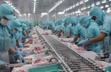 seafood export value down 10 percent in first four months