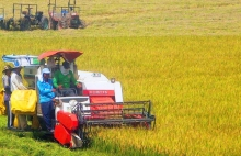 mekong delta undergoing agriculture transformation