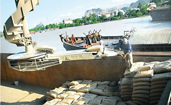 cement sector targets domestic sales
