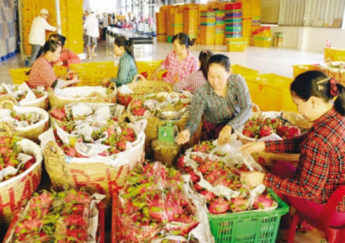 necessity to brand agricultural products