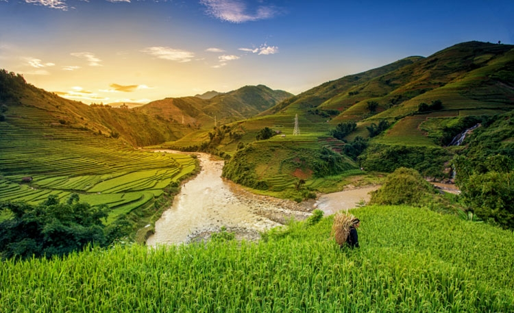 for the sustainable development of tourism in vietnam