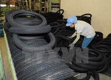 hcmc to host 2017 rubber tyre expo