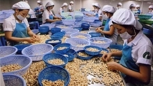 vietnam exporters updated on us import regulations