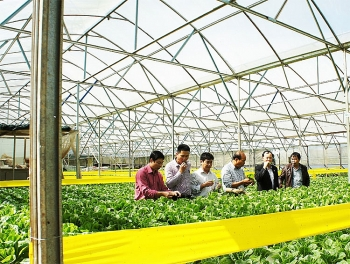 government seeking to boost foreign investment in agriculture