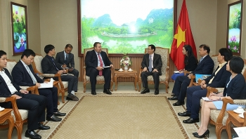 vietnam welcomes aess gas investment deputy pm