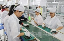 processing manufacturing industry attractive for foreign investors