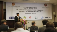 vietnam mozambique promote agricultural cooperation