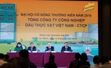 vietnam vegetable oil company eyes 48 trillion vnd in revenue