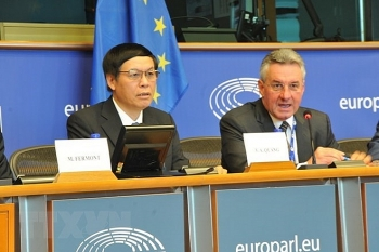 brussels workshop talks about eu vietnam free trade agreement