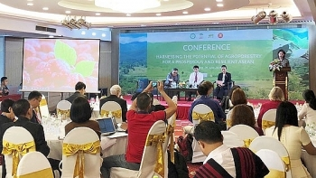 workshop seeks to optimise agri silviculture