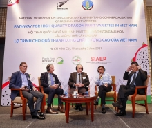 new zealand helps vietnam improve value chain steps for dragon fruit export