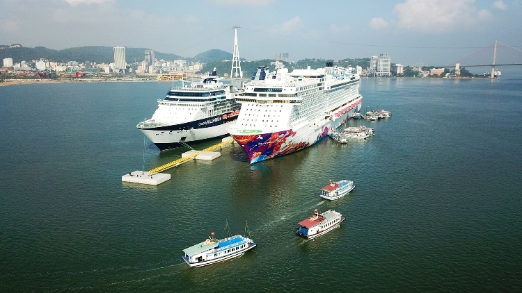 vietnams untapped cruise tourism potential