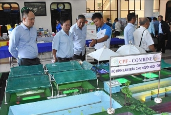 forum discusses measures to develop vietnamese shrimp brand