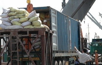 vietnams rice export revenue up 189 percent in first five months