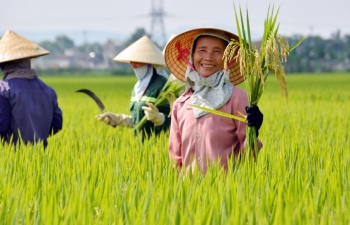 mekong delta boosting post covid 19 agricultural production
