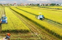 agriculture sector preparing to survive evfta challenges