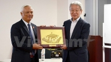 vice na chairman begins visit to japan