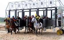 hong kong investor proposes racecourse in can tho