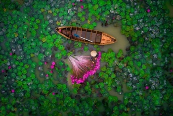 vietnamese wins prize at intl flycam photography contest