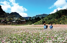 ambitious preservation projects in ha giang