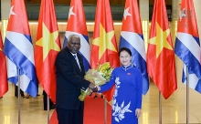 sunny future for vietnamese trade with cuba