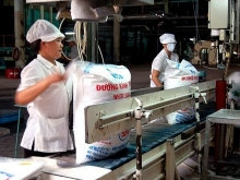 bien hoa sugar jsc to be delisted from hose