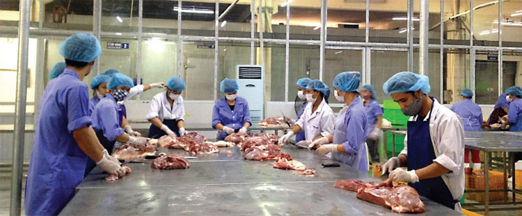 study concludes meat consumers must change habits