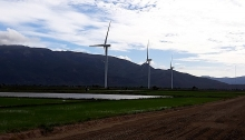 ninh thuan aspires to be vietnams heart of green energy