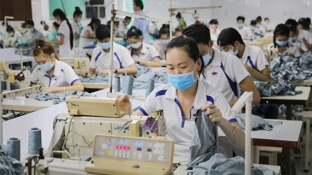 vietnam india boost cooperation in apparel industry