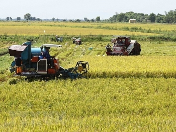 southern localities report bumper summer autumn crop