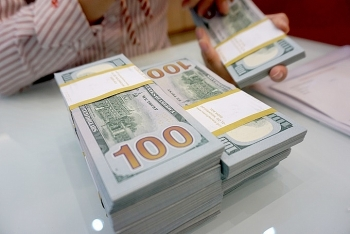 central bank allows dong to slide against greenback