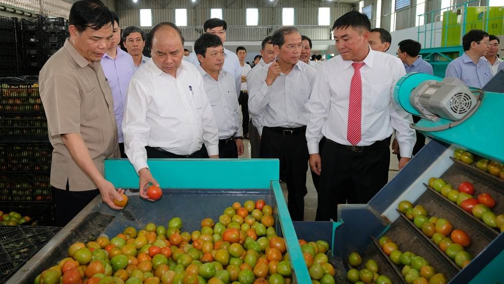 pm visits high tech agricultural production model in lam dong