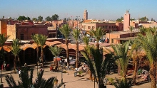 trade office advises firms to keep away from reported morocco firm