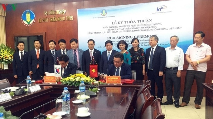 rok funds us 45 million for vietnam to improve rice value chain