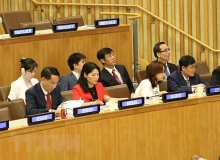 vietnam shares auditing experience in implementing sdgs