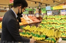 fruit vegetable export picks up despite covid 19
