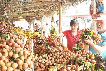 agro forestry fishery exports target us 33 billion