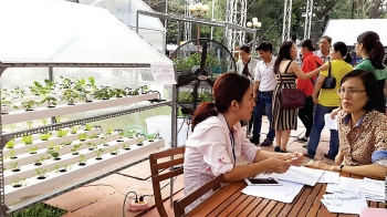 farm startups flourish in hcm city