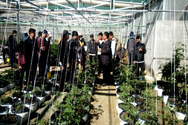 hcm city japans hokkaido step up agricultural aquatic cooperation